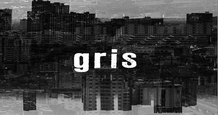 Editora CEPE realizá lançamento do livro GRIS nesta quinta-feira