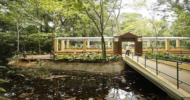 Exposição de aves silvestres é realizada no Jardim Botânico